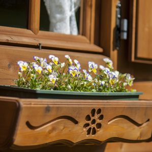 Dettaglio fioriera casetta Rustica