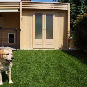 casetta legno per cagnolino